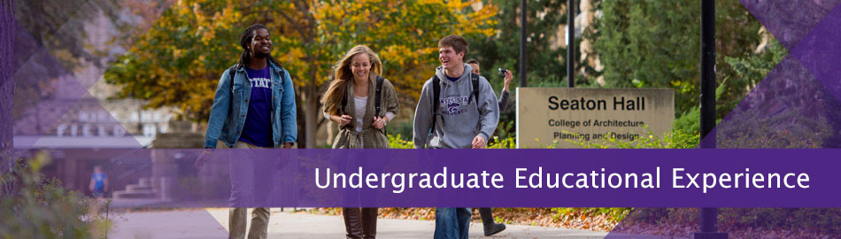 Undergraduate Educational Experience
