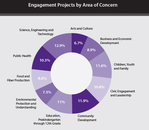 Engagement Projects by Area of Concern