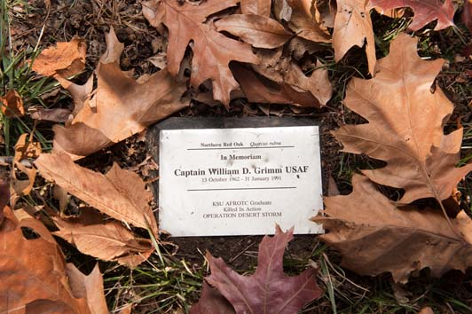 William Grimm Memorial - plaque