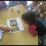 Looking at pictures of sunflowers we grew in our garden so that the children understand the seed head used to be a pretty sunflower.