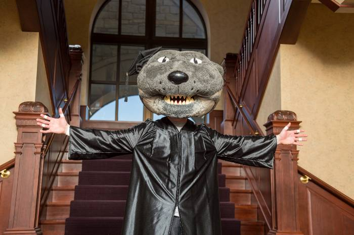 Willie the Wildcat in cap and gown