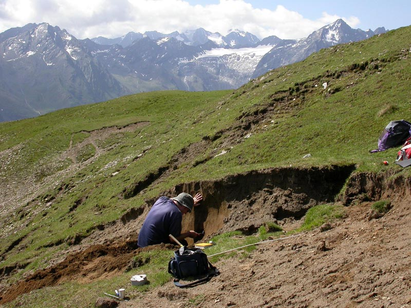 alps fieldwork
