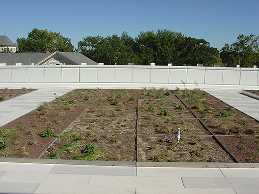 Planted green roof