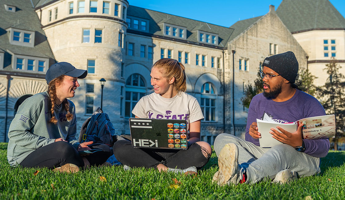 Students interacting on the Anderson Hall lawn