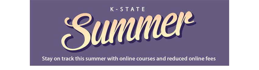 Stay on track this summer with online courses and reduced online fees