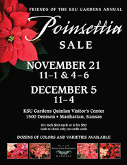 Poinsettia Sale Flyer