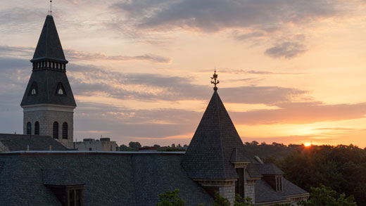 Rooftops at sunset