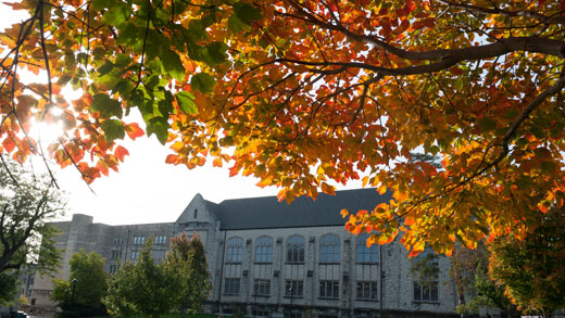 Hale Library in the fall