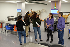 Students, faculty and staff of Kansas State University's College of Veterinary Medicine look over the newly renovated gross anatomy laboratory in Trotter Hall.