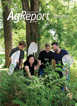 Fall 2018 AgReport cover