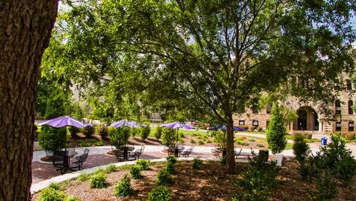 Purple umbrellas at Bluemont Hall's Holen Courtyard