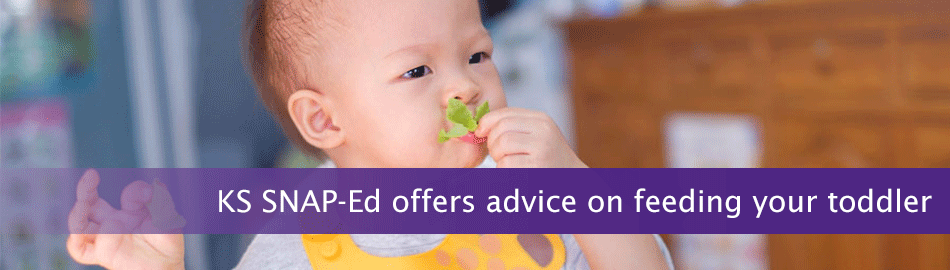 Kansas SNAP-Ed offers advice on feeding your toddler