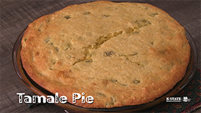 tamale-pie-picture