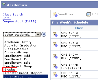 Picture of the Other Academic... drop list with Grades marked.