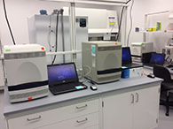 Thermo cyle machines perform COVID-19 PCR tests.