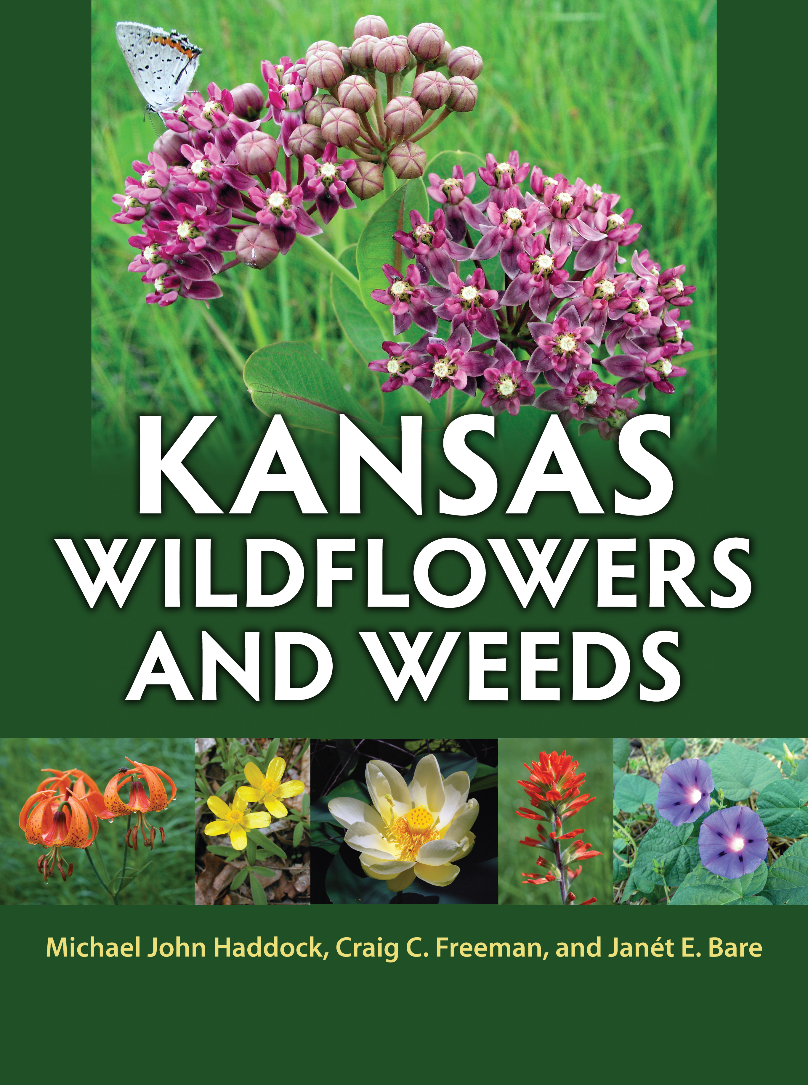 """Kansas Wildflowers and Weeds"""