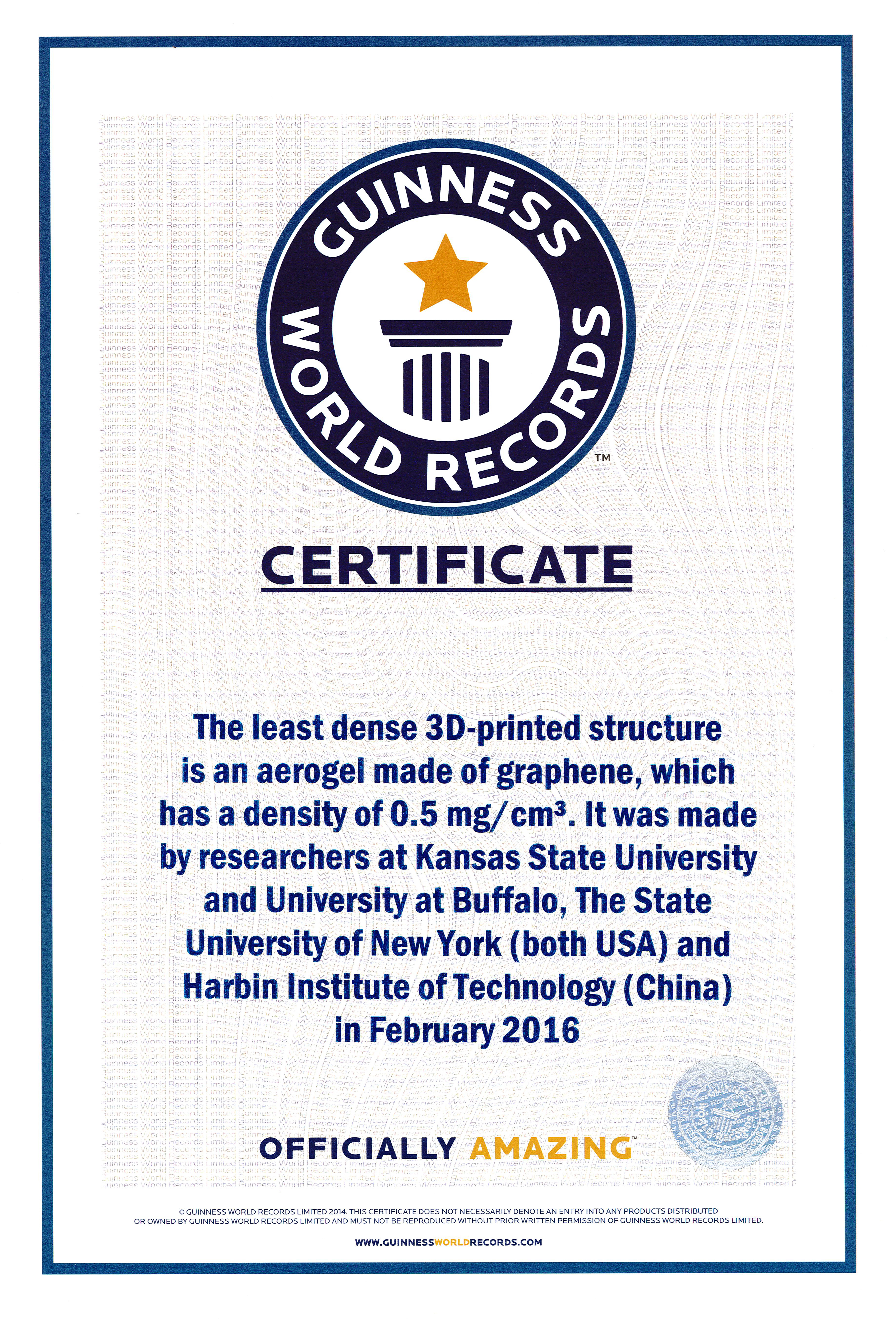 Guinness World Record Certificate Template Selowithjo