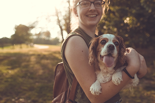Pet owner holds dog (stock photo)