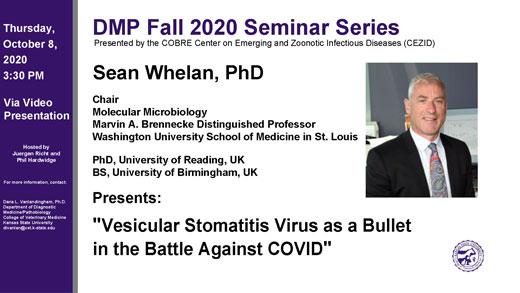 DMP seminar with Sean Whelan flyer