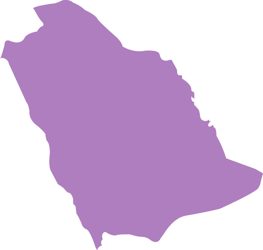 Outline of Saudi Arabia