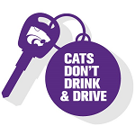 Cats Don't Drink and Drive