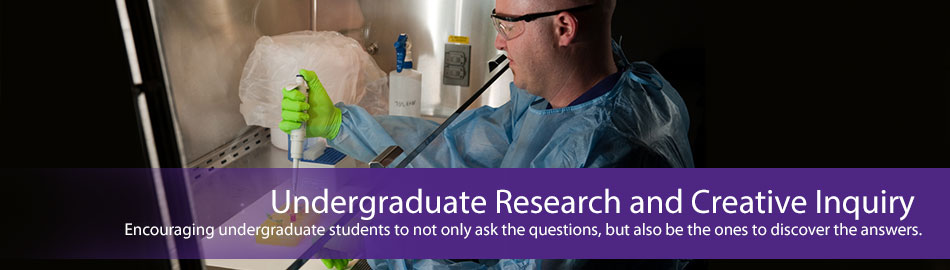Undergraduate Research and Creative Inquiry