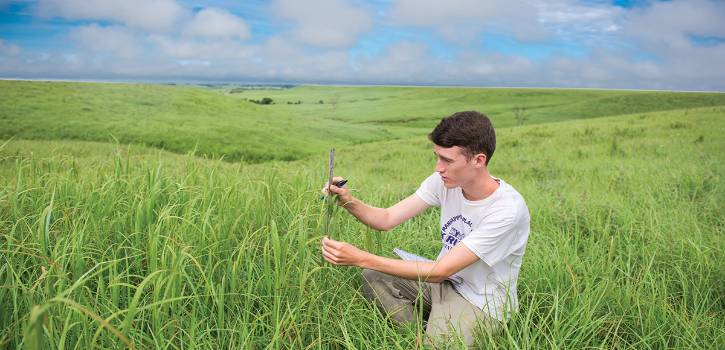 Researchers study on the Konza Prairie Biological Station.
