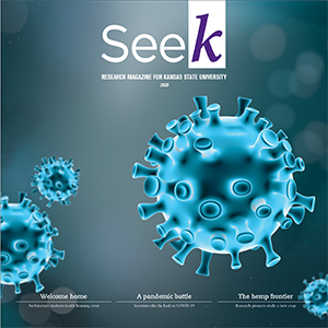 Seek research magazine cover