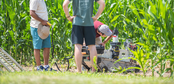 Agricultural robot enters field for research study.
