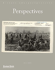 Fall 2015 Perspectives magazine cover