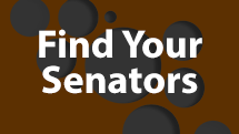 Senate Graphic