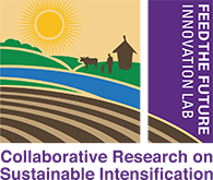 Feed the Future Innovation Lab: Collaborative Research on Sustainable Intensification
