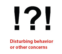 Disturbing behavior or other concerns