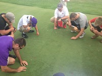 students inspecting turf