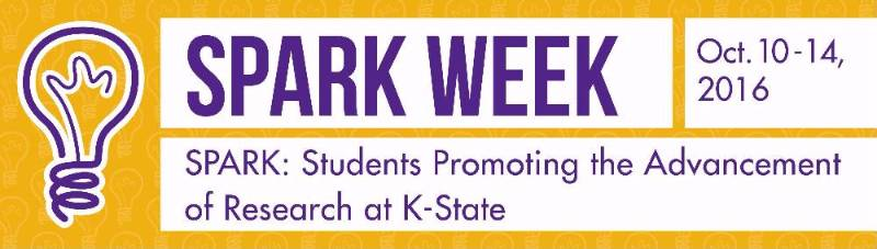 Undergraduate Research: SPARK Week