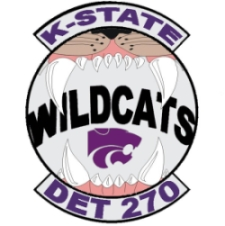 Wildcat Warrior Patch
