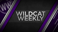 wildcatweekly-link